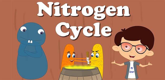 nitrogen aerosol